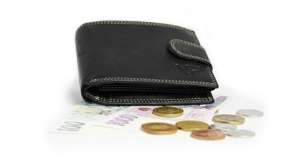 Kožená peněženka s českými penězi